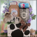 Call of the Wild Dog Gift Package