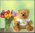 Noah The Feel Better Bear Plush Gift Package