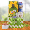 Cat Treats & Toy Gift