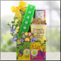 Get Well Pooch Dog Gift Package