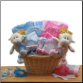 Double Delight Twins New Babies Gift Basket - Pink,Blue