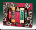Wreath Of Treats Party Pack Holiday Gift Package