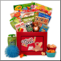 Get Well Beary Soon Get Well Gift Box For Kids