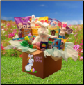 Easter Family Fun Deluxe Care Package